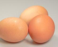 卵子のしくみとは?