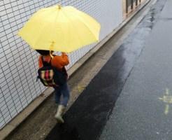雨の日に読みたいおススメ絵本まとめ