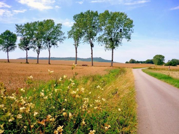 Campagne lorraine près de Sion-Vaudémont © French Moments