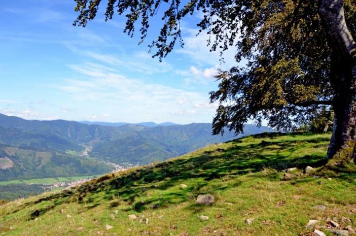 Évasion en Alsace-Lorraine : Massif des Vosges © French Moments