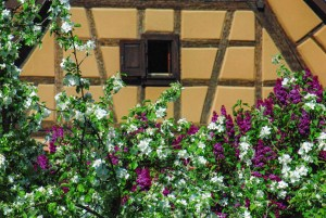 Bergheim © French Moments