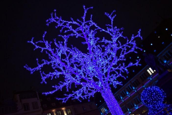 L'arbre bleu de la place Gutenberg © French Moments