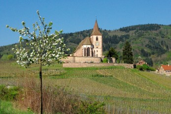 Hunawihr Alsace