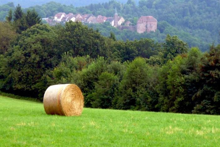 Châteaux-forts d'Alsace : La Petite Pierre © French Moments