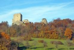 Châteaux-forts d'Alsace Landskron