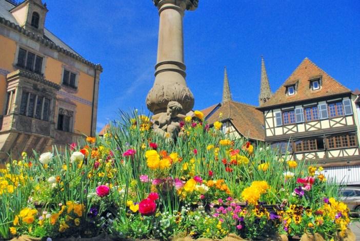 Photos de printemps en Alsace : Obernai © French Moments