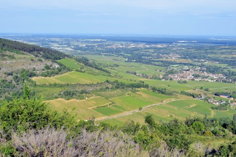 Le vignoble de Santenay vu du mont de Sène © French Moments