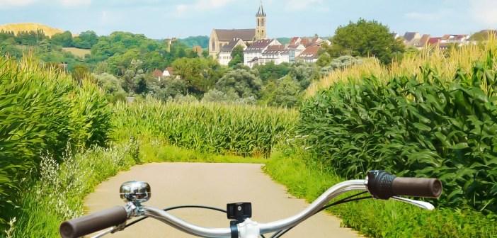 Les plus belles pistes cyclables d'Alsace
