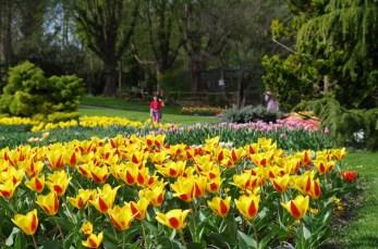 Parc Zoologique et Botanique de Mulhouse © OTC_BBuhrer