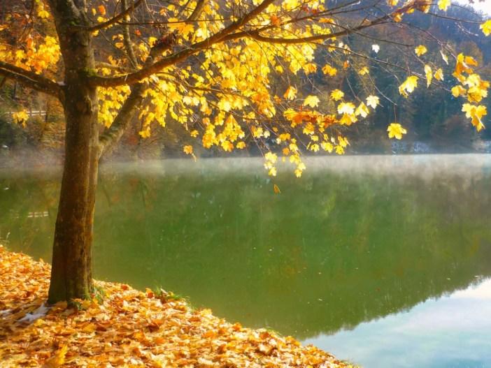 L'automne - L'étang de Lucelle, Jura alsacien © French Moments