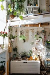 Inspiration d'un jardin d'intérieur
