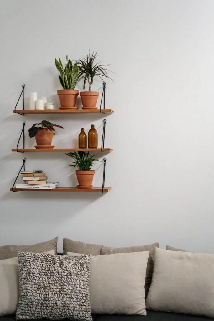 support mural en bois avec plante d'intérieur