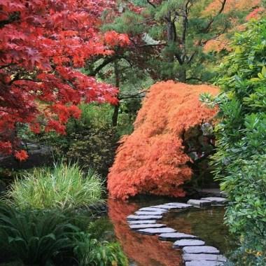 Inspiration pour mon jardin japonais