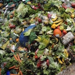 La cuisine zéro déchets : ça y est on y arrive