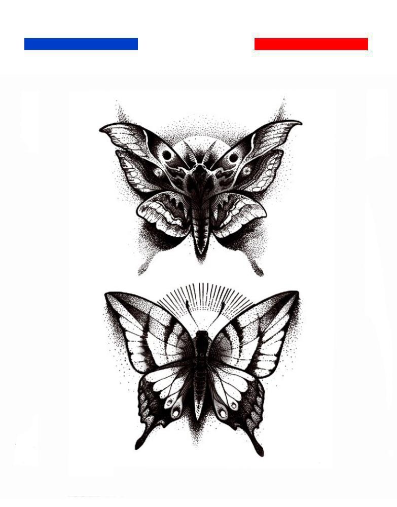 Papillon De Nuit Noir Et Blanc : papillon, blanc, Tatouage, Papillon, Réaliste, Petit, Temporaire
