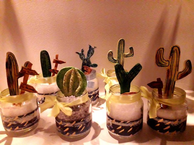 Les mini cactus