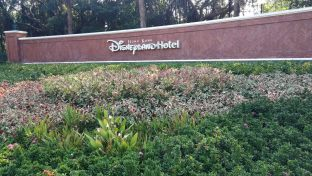 HK-DisneylandHotel-IMG_20191125_094532