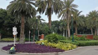 HK-DisneylandHotel-IMG_20191126_104043