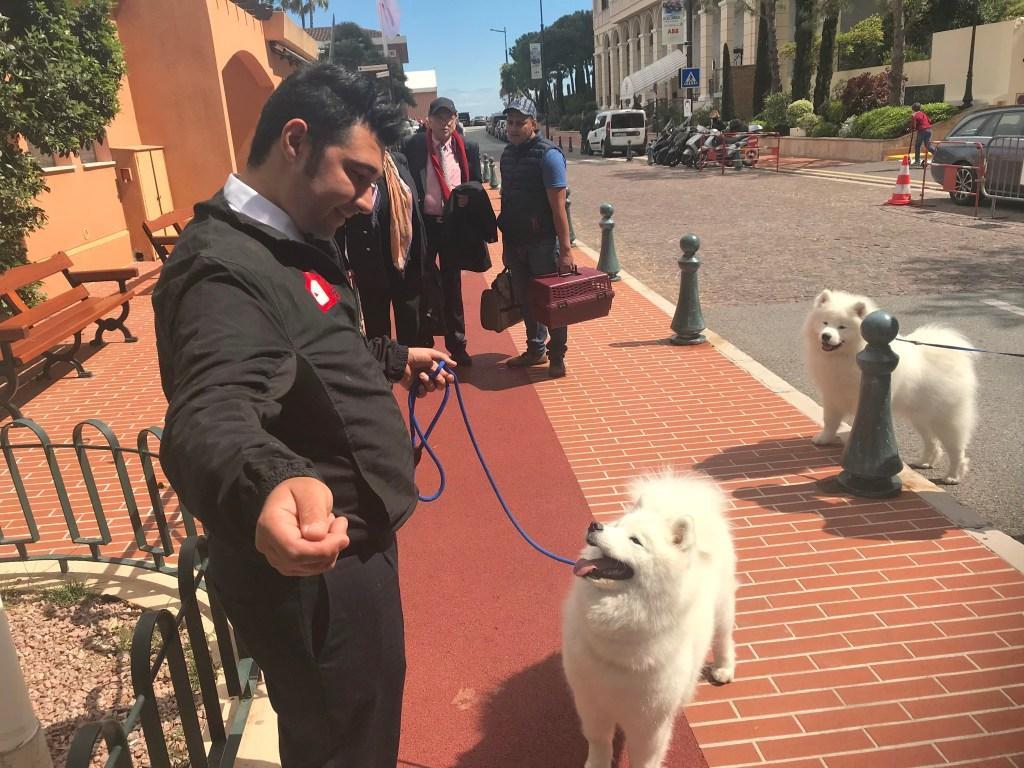 1346 Cani a Monte Carlo