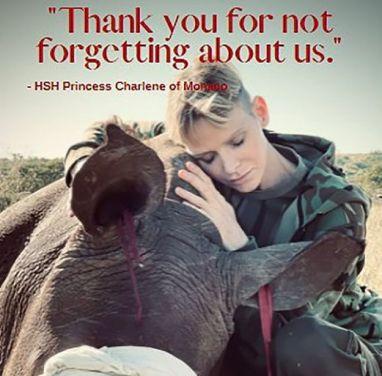 Charlene di Monaco e la Difesa dei Rinoceronti