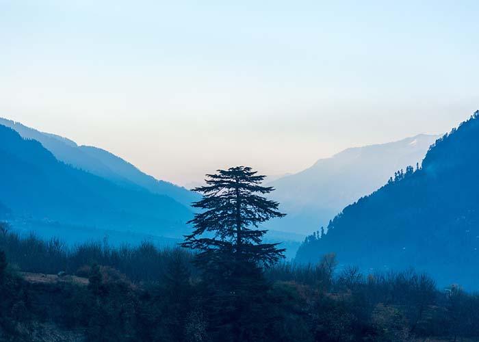 Manali Himalayas.jpg
