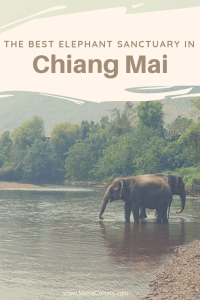 Click this pin to read all about the best elephant sanctuary in Chiang Mai, Thailand. Elephant Nature Park is one of the true few elephant rehabilitation centers in Thailand, and one the top things to do in Chiang Mai and the best things to do in Thailand. | MonaCorona.com | #Thailand #ChiangMai #Travel #Bucketlist #Thingstodo #itinerary #elephants #elephantsanctuary #tailandia #traveltips #tips #ethical