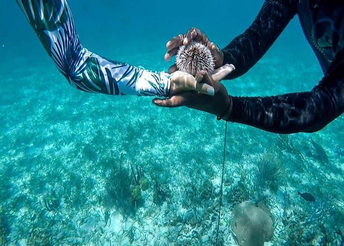 belize barrier reef.jpg