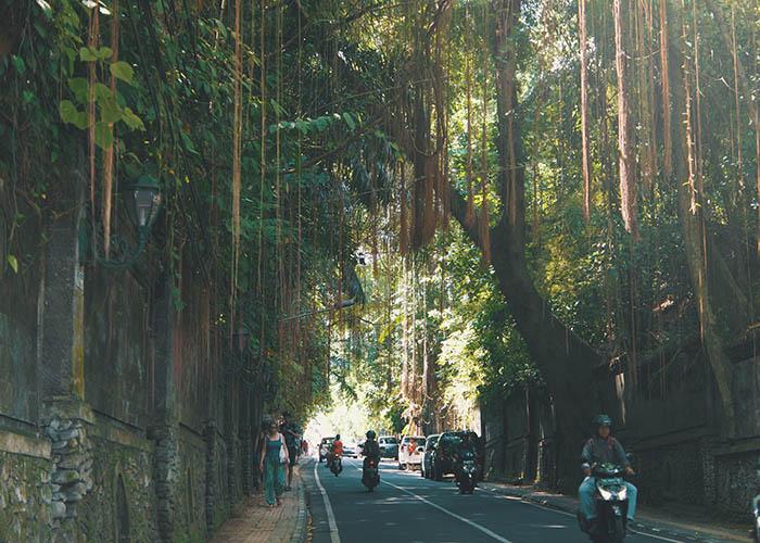 Bali scooter.jpg