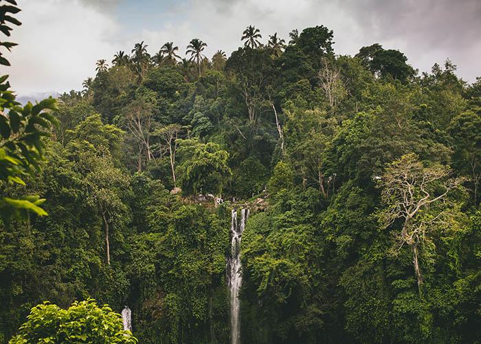 Sekumpal waterfall.jpg