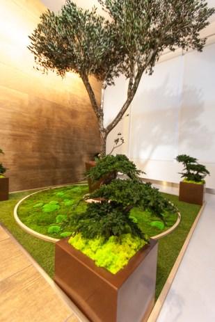 """""""El jardín del olivo"""", Claudia Bonollo para MONAMOUR NATURAL DESIGN"""