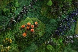 201606-botanico07