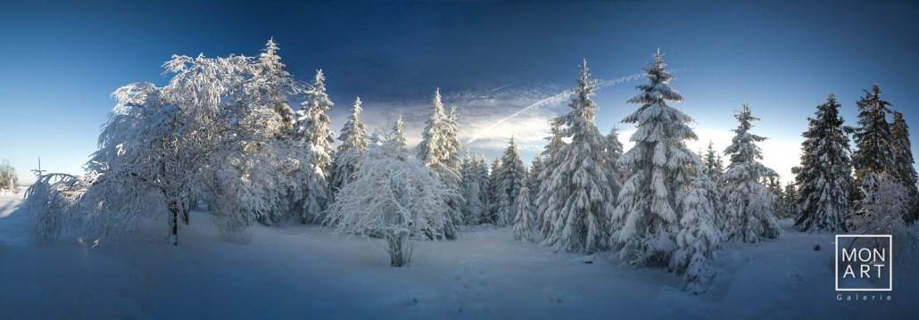 Winter im Venn Panorama