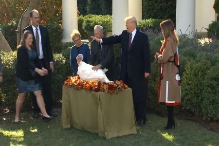 What Melania Wore at White House Thanksgiving Turkey Pardoning