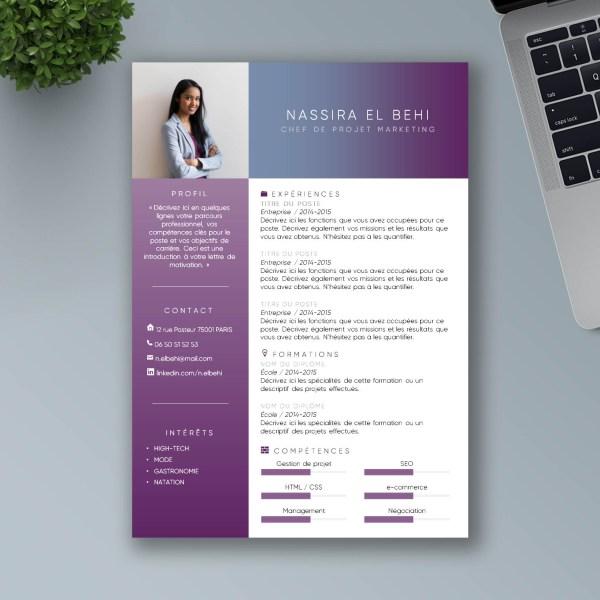Exemple de CV moderne