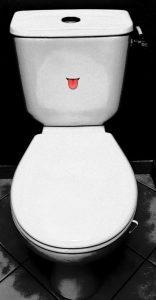 Photo article de vous @moi les toilettes et les femmes pamphlet billet d'humour monblabladefille.com