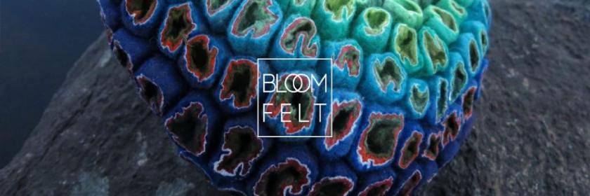 Bloomfelt, Marjolein Dallinga ; Mon Carré de Sable