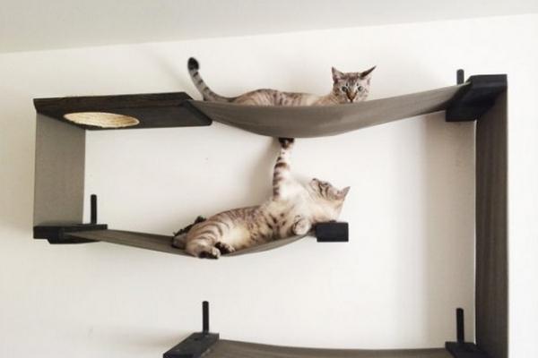 meuble a chat 2 0 decouvrez notre