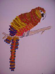 cadre-en-copeaux-de-taille-crayon perroquet