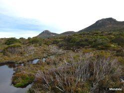 Hartz Peak