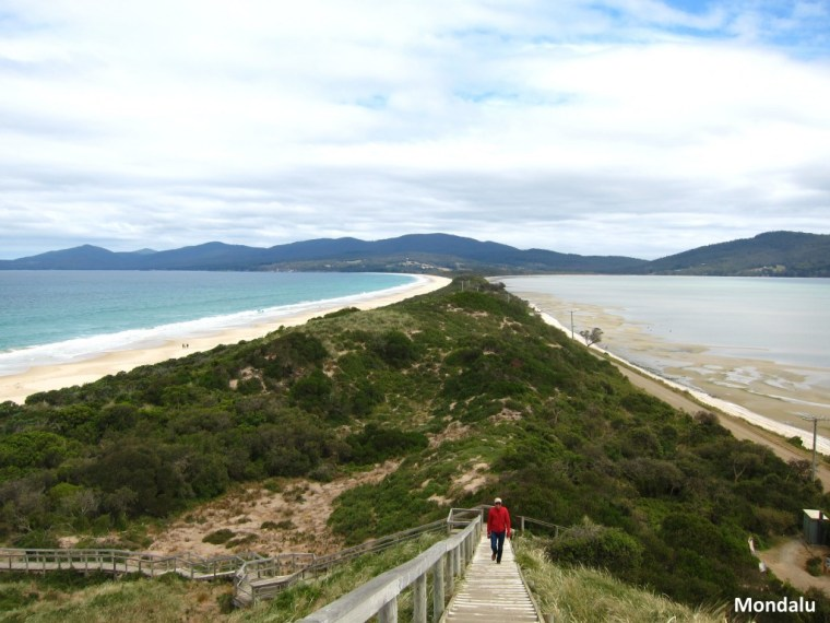 The Neck - Bruny Island