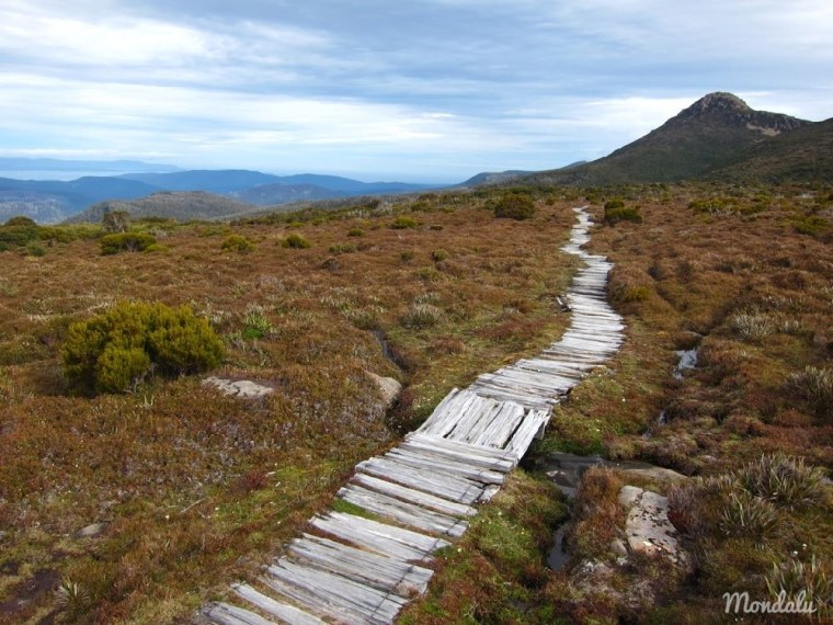 Photo du chemin de randonnée menant au sommet de Harzt Mountain en Tasmanie
