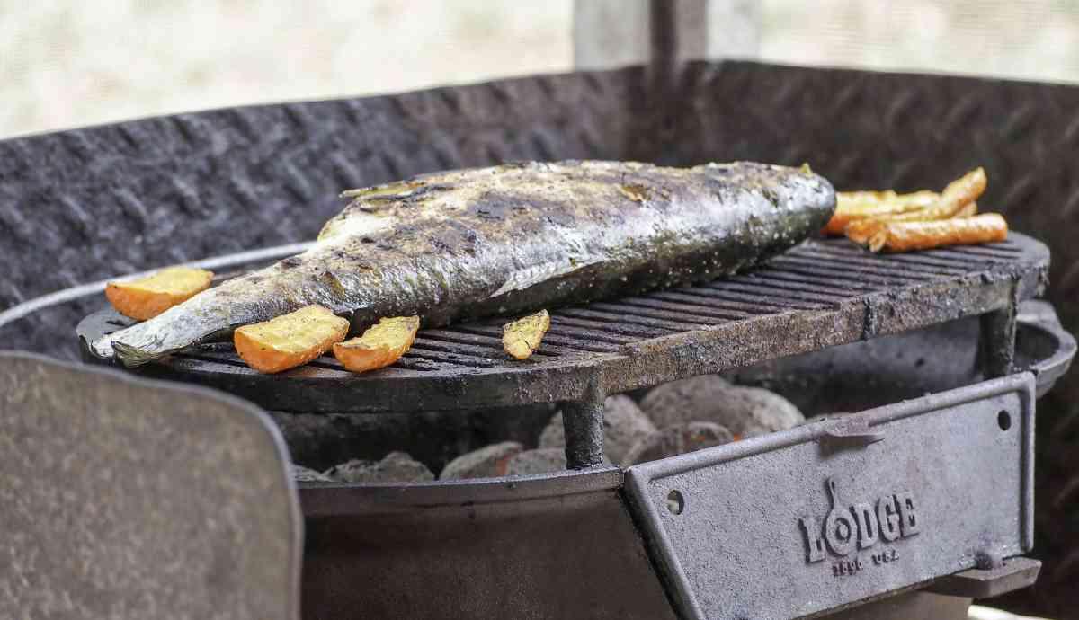grilled lemon herb trout