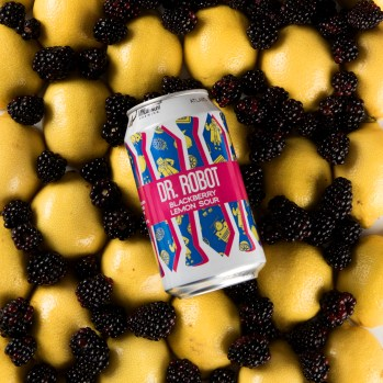 Dr. Robot - Blackberry Lemon Sour.