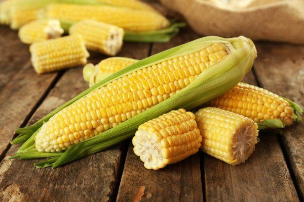 فوائد الذرة الصفراء للطفل