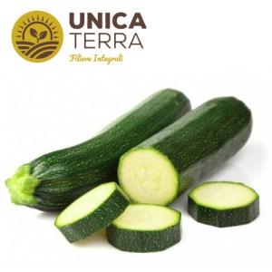zucchina UT