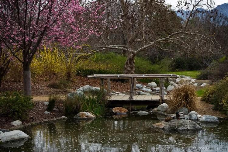 40 Foto di Giardini Zen Stupendi in stile Giapponese  MondoDesignit