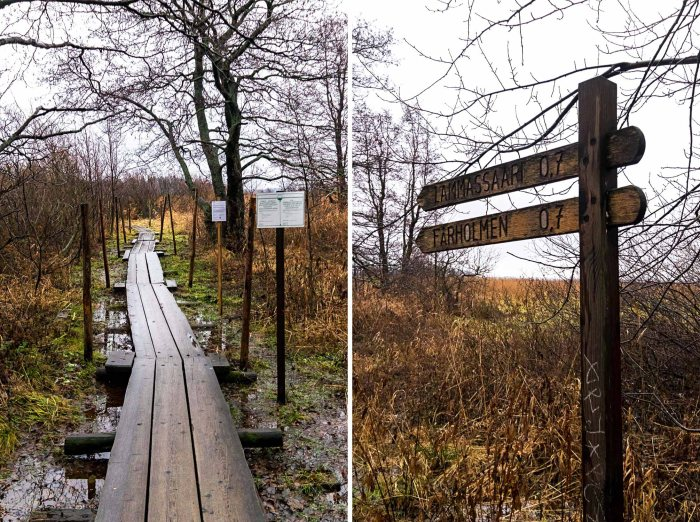 Vanhankaupunginlahti Nature Reserve - Helsinki: A Two-Day City Guide to The Finnish Capital