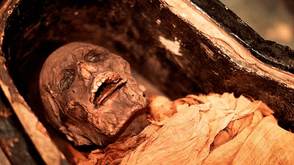 Please stop what you're doing and listen to this ancient mummy's voice