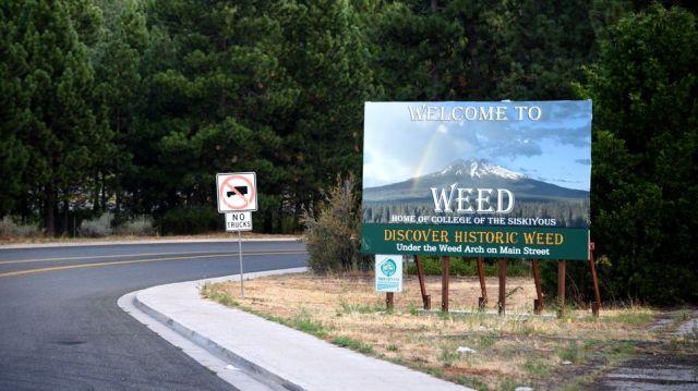Weed companies find hilarious ad regulations loophole in adopting highways