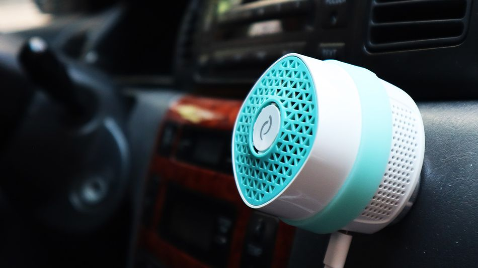 Get rid of lingering odors in your car.